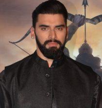 Nikitin Dheer Actor