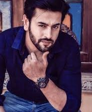 Shashank Vyas Actor, Model