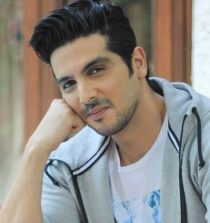 Zayed Khan Actor, Producer