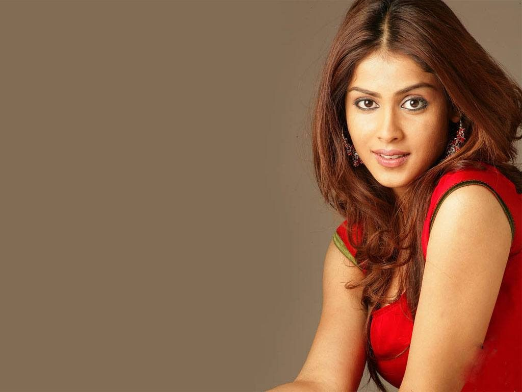 Genelia D'Souza Bio, Height, Weight, Age, Family, Boyfriend And Facts - 8298e98f6acfc9131740290fd55edffb 1024x768
