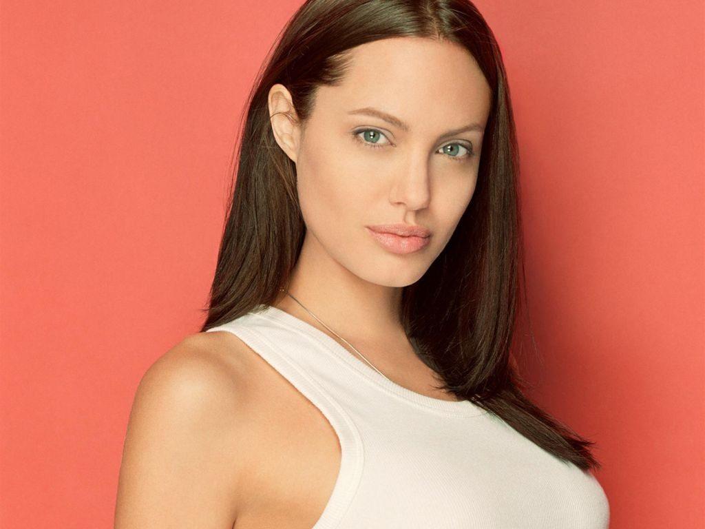Angelina Jolie Wallpapers hd 1024x768 1024x768