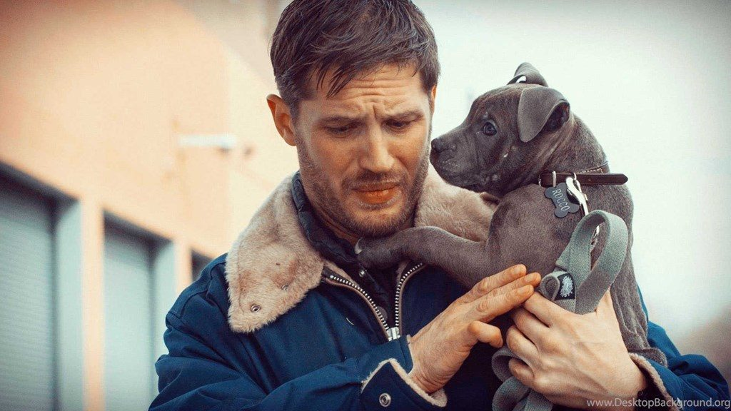 597682 tom hardy hd wallpapers 1920x1080 h 1024x576