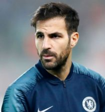 Cesc Fabregas Professional Football Player