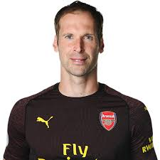 Petr Cech Czech Professional Football Player