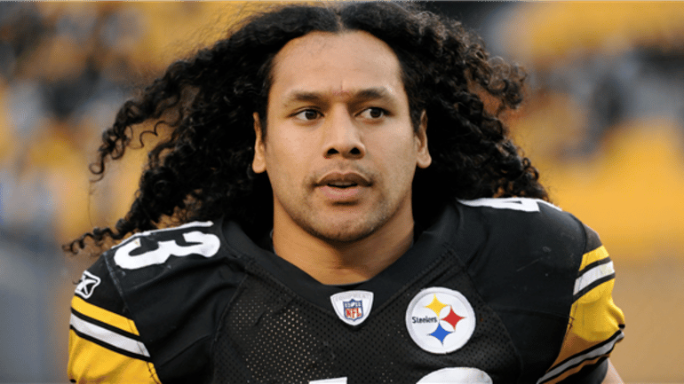 Troy Polamalu American American Football Player