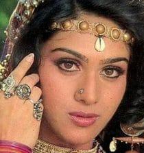 Meenakshi Seshadri Actress