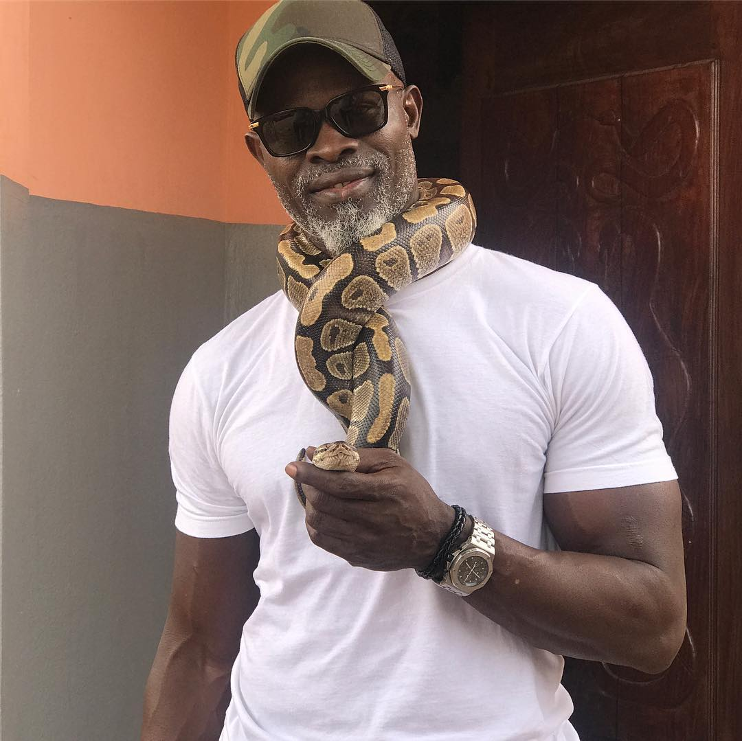 Djimon Hounsou American Actor, Producer, Former Model, Entrepreneur (President and CEO of Fanaticus Entertainment)