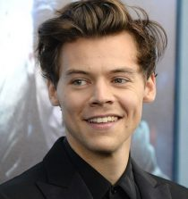 Harry Styles Actor, Singer, Songwriter