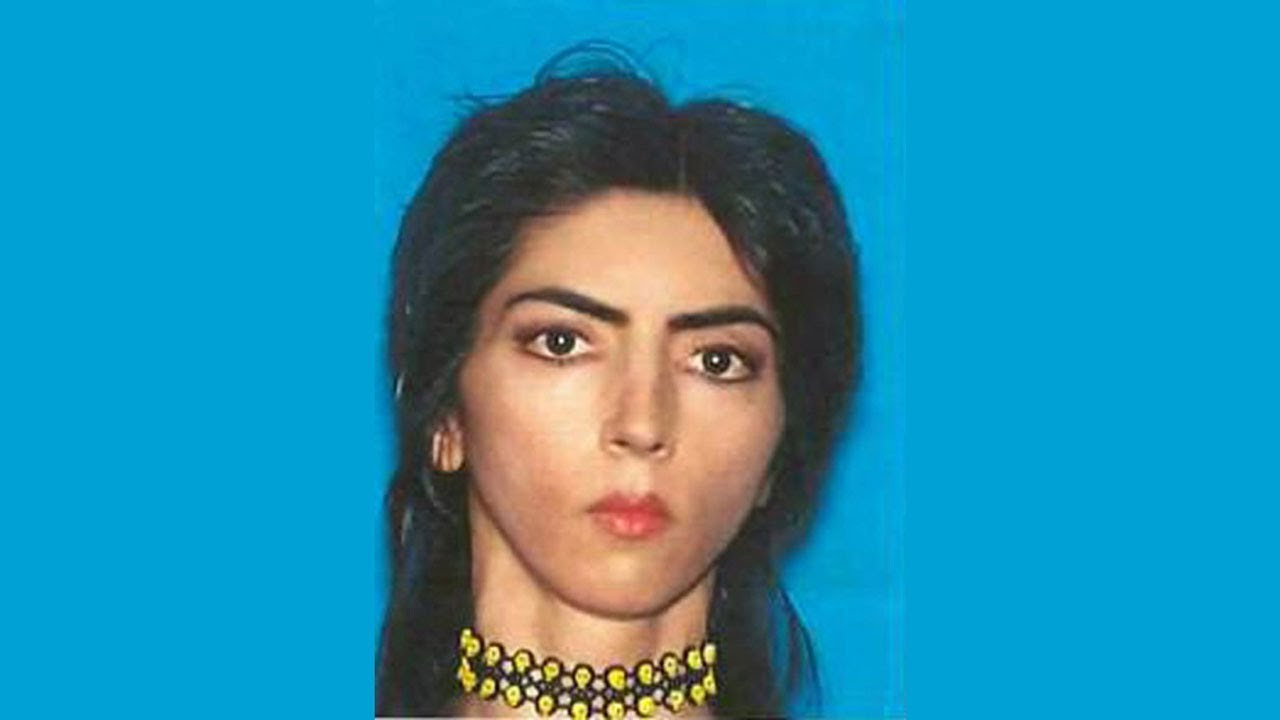 Nasim Aghdam American Professional Youtuber, Animal Rights​ Activist and Advocate