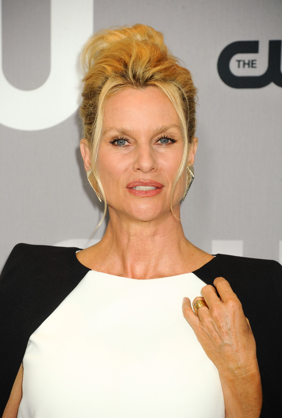Nicollette Sheridan British Actress, Writer, Producer