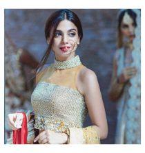 Sonya Hussain Actress, Model, TV Host