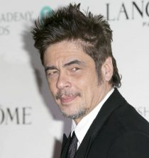 Benicio del Toro Actor, Film Producer