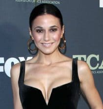 Emmanuelle Chriqui Actress