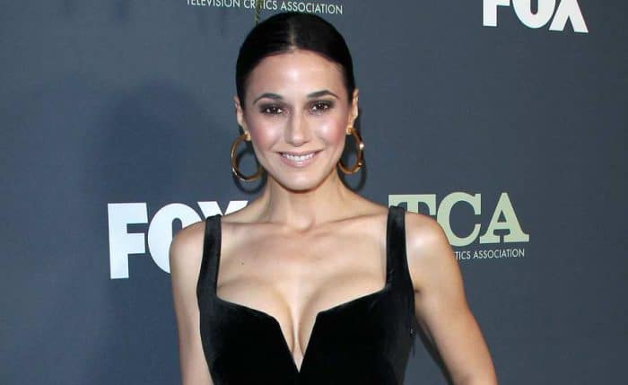 Emmanuelle Chriqui Canadian Actress