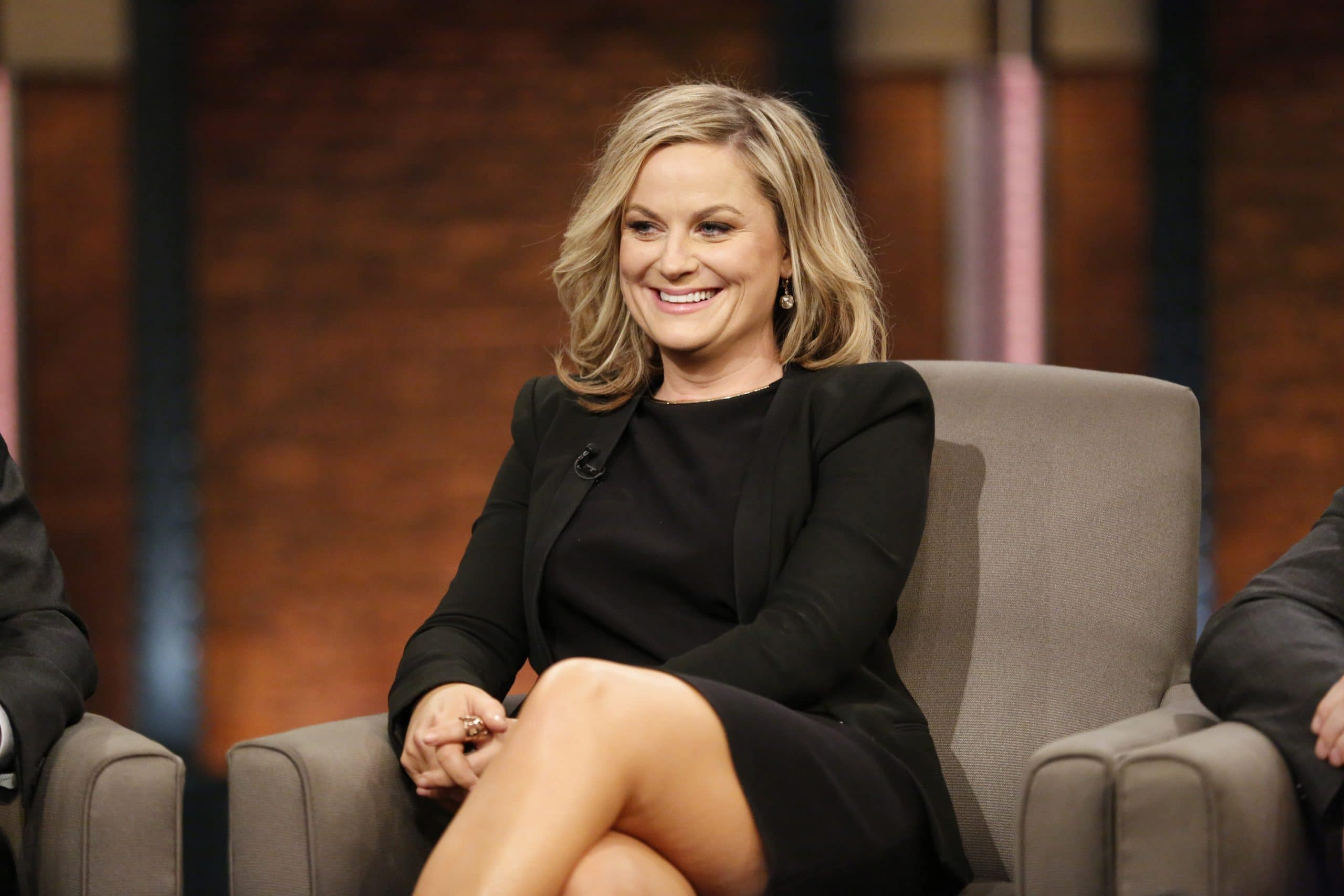 Amy Poehler American Actress, Comedian, Director, Producer and Writer