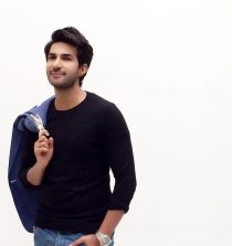Adeel Chaudhry Actor, Model, Singer, Song Writer