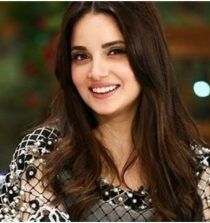 Armeena Khan Actress, TV Actress, Model