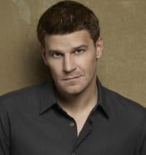 David Boreanaz Actor, Television Producer, Director