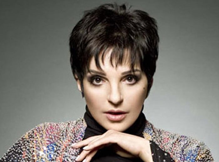 Liza Minnelli American Actress, Singer