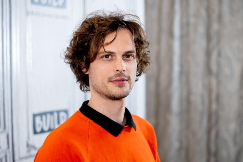 Matthew Gray Gubler American Actor, Director, Producer, Photographer, Screenwriter, Painter, Editor, Fashion Model