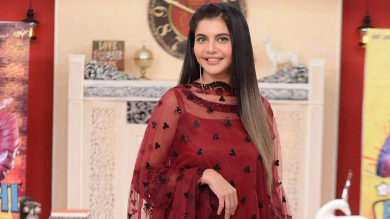 Nida Yasir Pakistani Actress, Host, Model