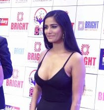 Poonam Pandey Actress