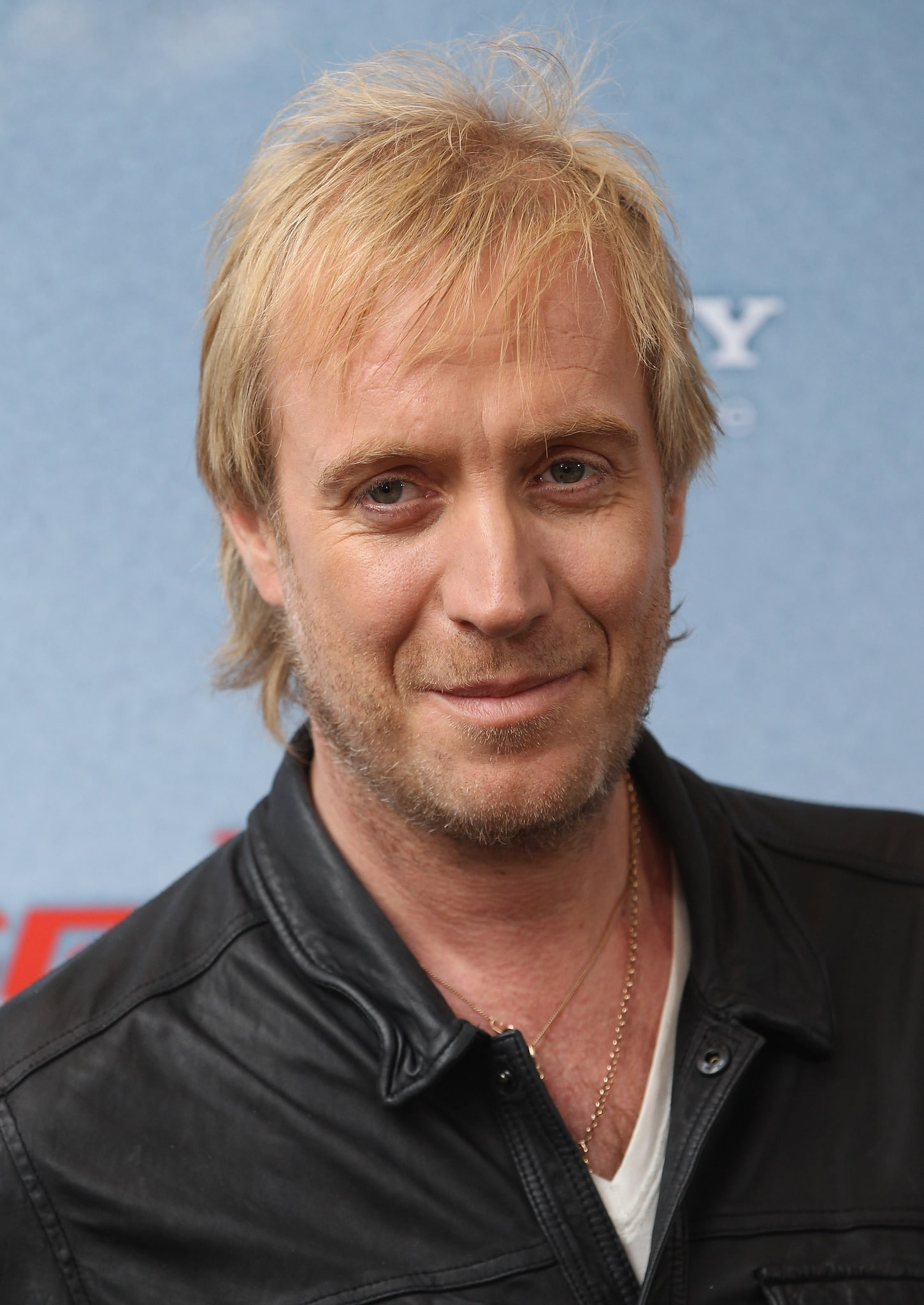 Rhys Ifans Welsh, British Actor, Singer