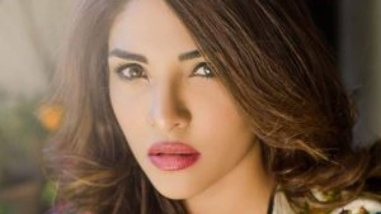 Zhalay Sarhadi Pakistani Actress, Model
