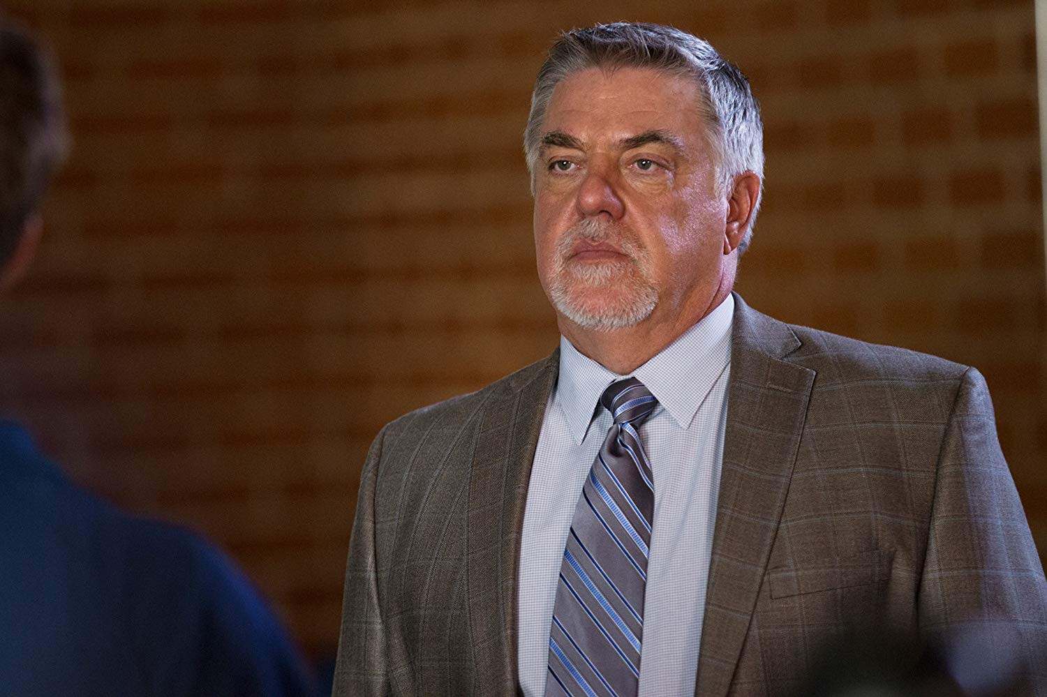 Bruce McGill American Actor