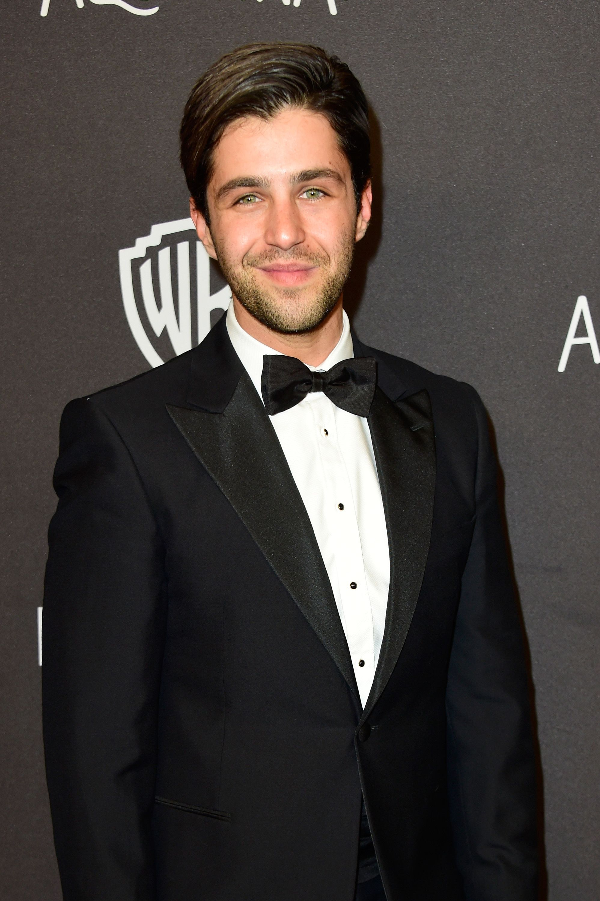 Josh Peck American Actor, Comedian, Voice Actor, Youtuber