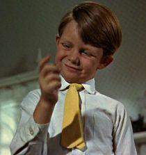 Matthew Garber Child Actor