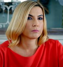 Şebnem Dönmez Actress, TV Host