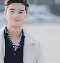 Park Seo-joon Actor