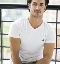 Zain Khan Durrani Actor, Poet