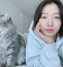 Park Shin-hye Actress, Singer