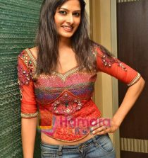 Priyanka Shah Actress