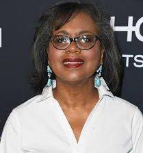 Anita Hill Lawyer