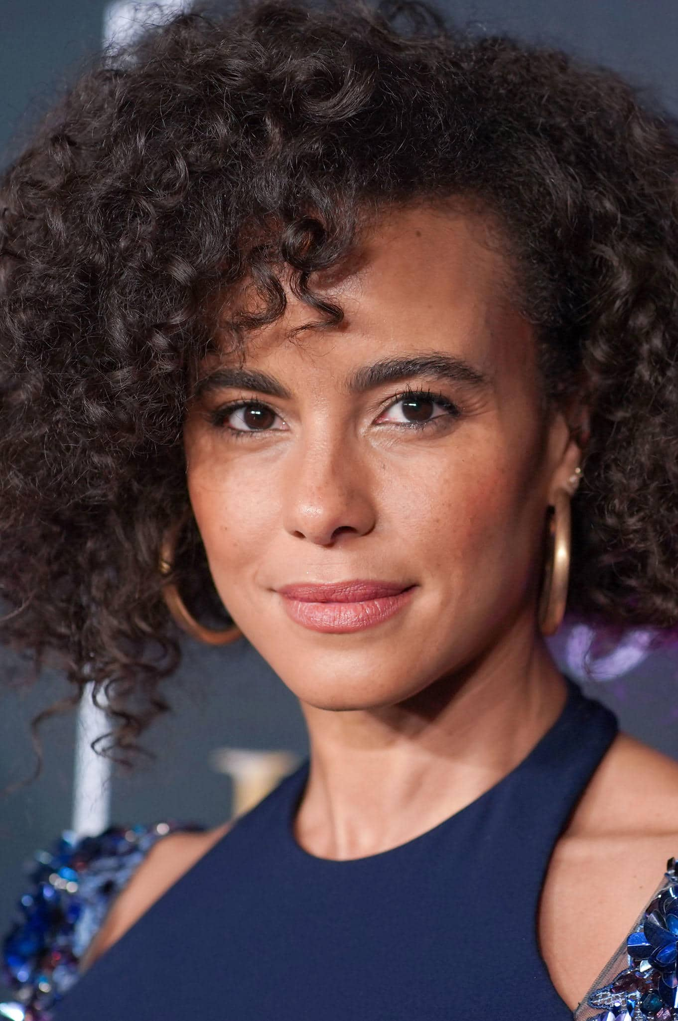 Parisa Fitz Henley Biography Height Life Story Super Stars Bio The net worth and salary of araya are unknown. parisa fitz henley biography height