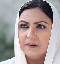 Fariha Jabeen Actress