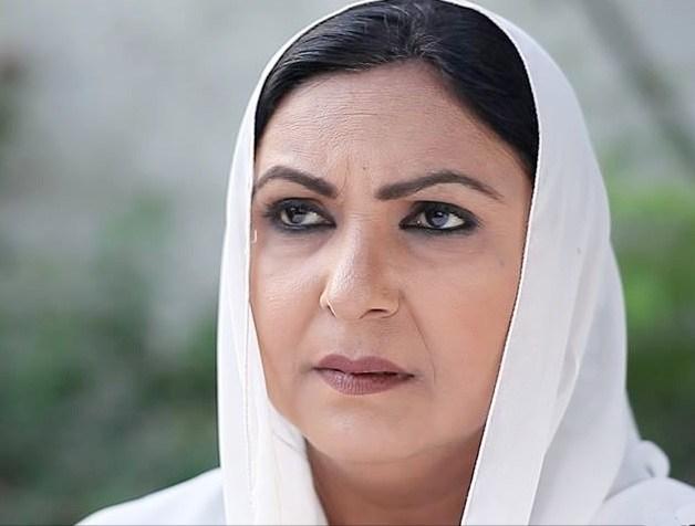 Fariha Jabeen Pakistani Actress