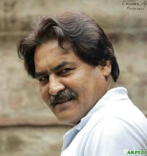 Rashid Farooqui Actor