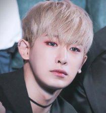 Wonho Singer