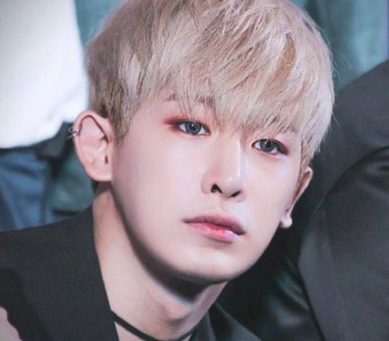 Wonho heis 548x480