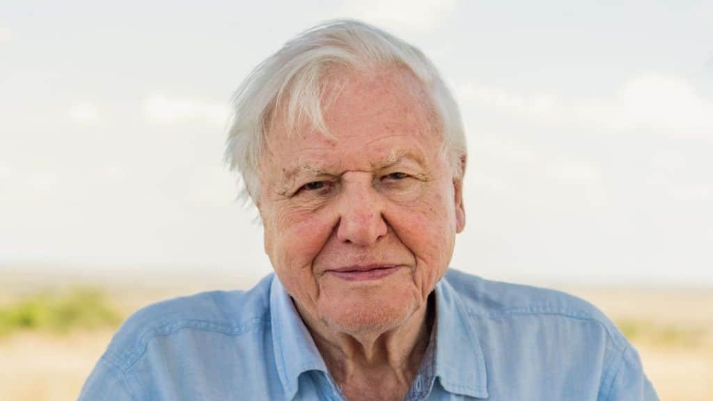 David Attenborough Biography Height Life Story Super Stars Bio