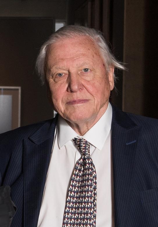 David Attenborough British Broadcaster, Historian